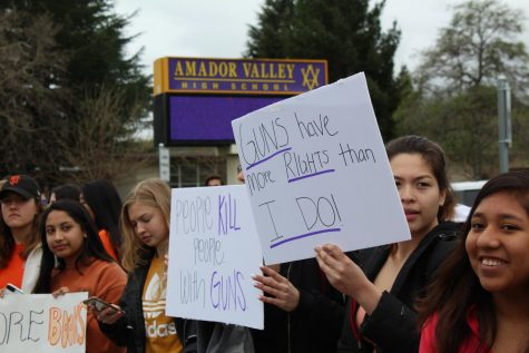 Protest and Memorial Held at Amador for Gun Control