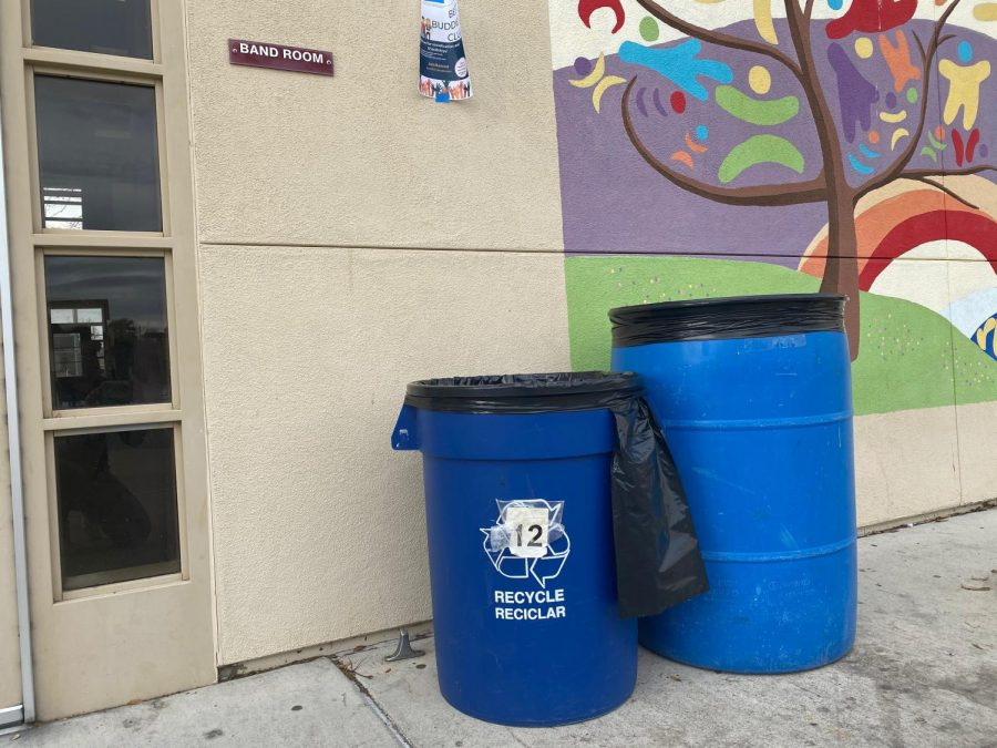 What+Happened+to+the+Blue+Recycling+Bins%3F