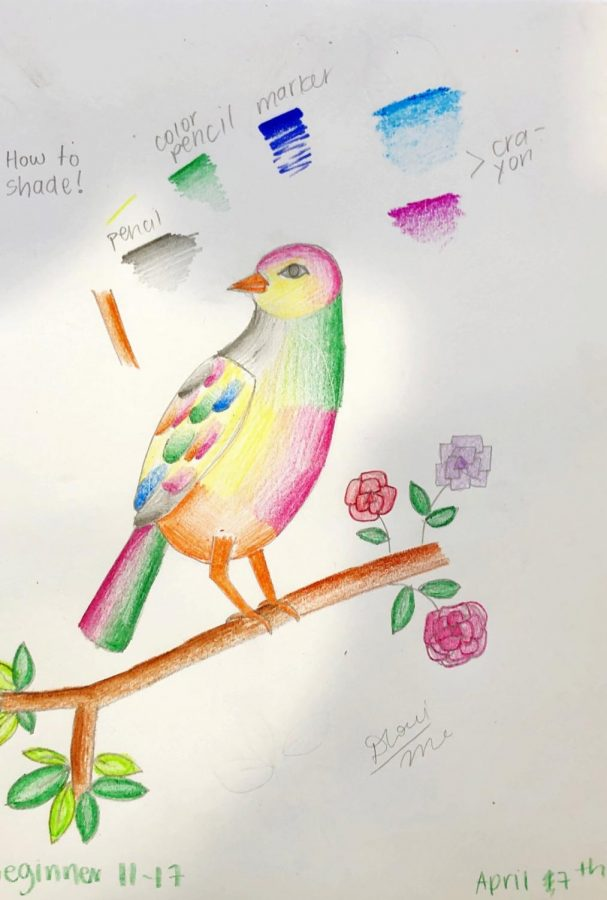 This beautiful bird is a piece of artwork by one of Dhruvi's students.