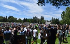 Pleasanton protests for