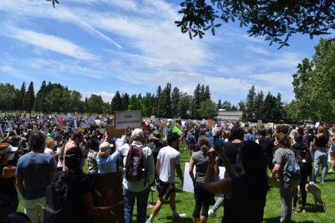 "Pleasanton protests for ""Black Lives Matter"" movement"