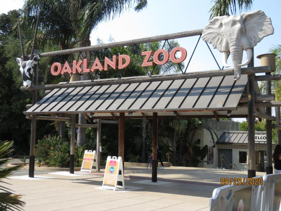 The Oakland Zoo has officially re-opened it's doors to the Bay Area, with COVID-19 precautions in place.