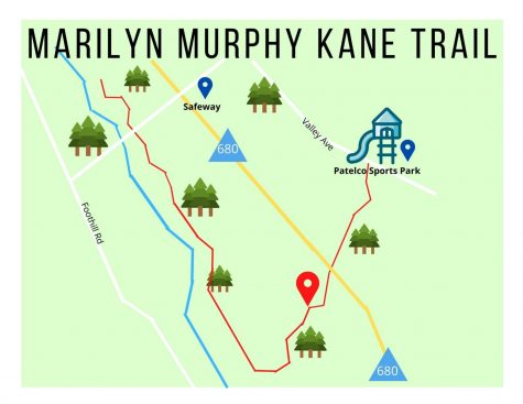 PPD find body near Marilyn Murphy Kane Trail on Thursday