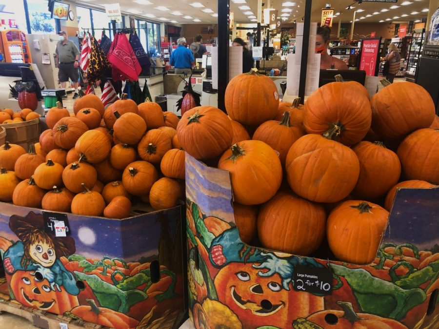 The pumpkin carving contest should be fun for everyone! If you're looking for a pumpkin, you can find plenty at Safeway!