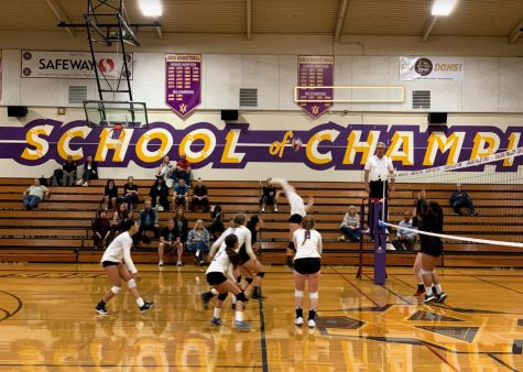 Girls Volleyball is one of the sports that will be postponed.
