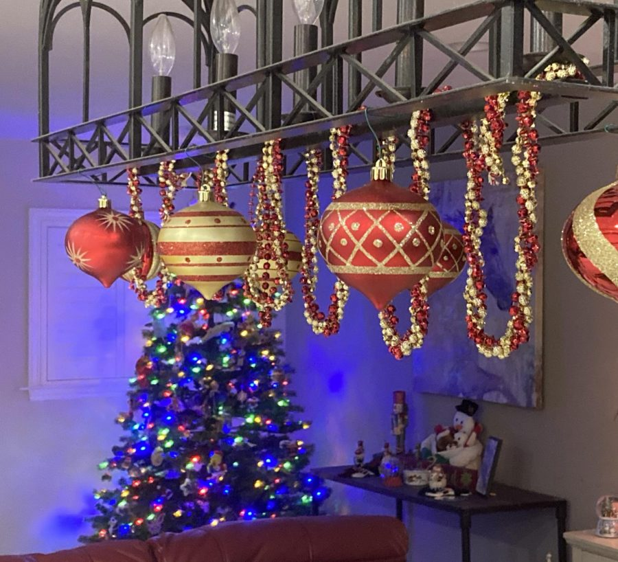 Max+Flasck+%28%2722%29+decorated+his+house+with+Christmas+ornaments+with+his+family%21