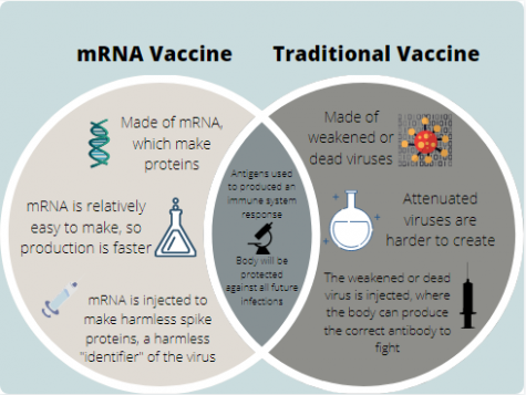 The image shows an image explaining the key similarities and differences between the traditional attenuated vaccines and the new mRNA vaccines.