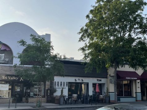 Downtown Pleasanton carries shops for everyone's needs, with small local stores and chain stores alike.