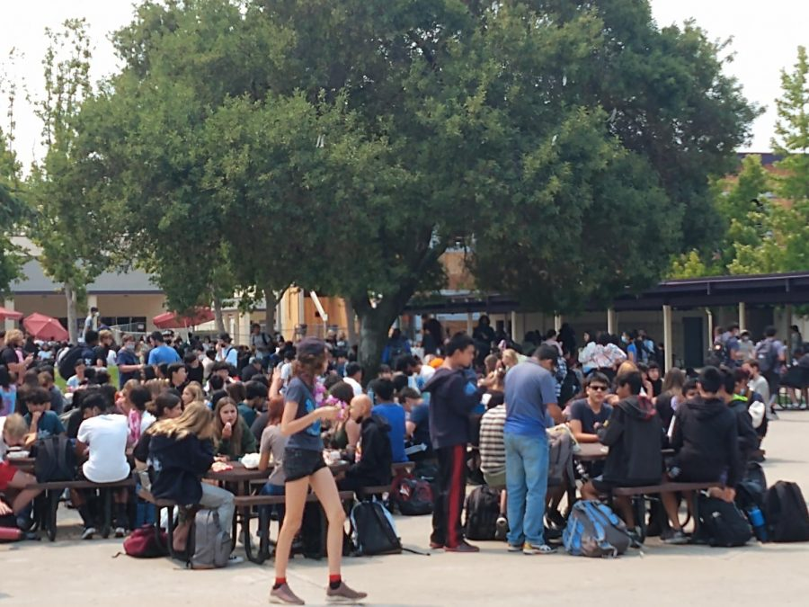 Many students are still unaware of the potential risk of the virus spreading spreading, and crowds of students enjoy lunch together, putting risk to the schools pandemic defense.